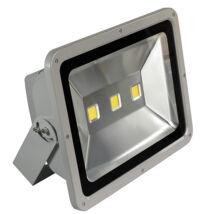 LED reflektor 150W (kültéri)