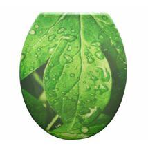 Duroplast műanyag WC ülőkék - zöld leveles