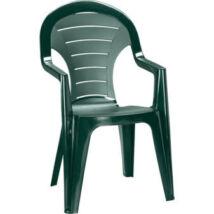 Allibert Bonaire kartámaszos műanyag kerti szék, sötétzöld