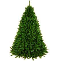 Telt dús műfenyő - Alpine spruce